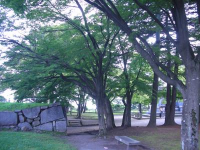 morioka-02.jpg